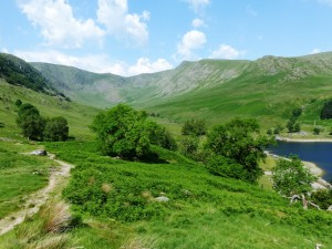 Kidsty Pike 1.7.15 - Copy