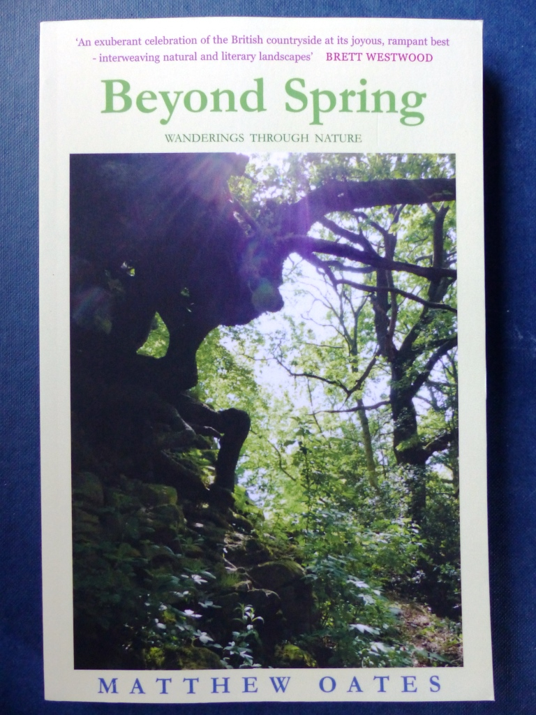 Beyond Spring (published Oct. 2017)